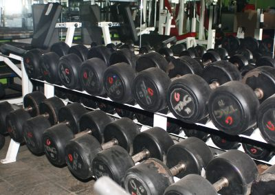 free-weights-IMG_7085